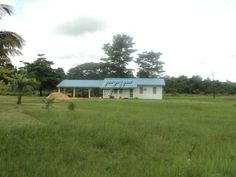 515 acre Cattle ranch for sale in Punta Gorda, Belize!