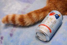 水曜日のネコ  cat with beer