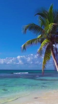 Kadealo Africa Comoros Moheli – Astonishingly Beautiful African Islands to Visit Sky Landscape, Fantasy Landscape, Beautiful Nature Wallpaper, Beautiful Landscapes, Forest Scenery, View Wallpaper, Excursion, Tropical Beaches, White Clouds