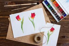 акварель, тюльпаны, watercolor