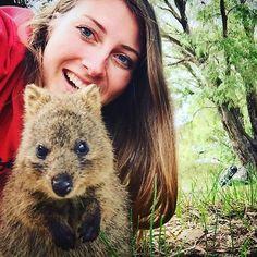 Just making some new friends on Rottnest Island!   Credit: @its_duchesse   #ExperienceKarma #KarmaGroup #KarmaResorts #KarmaRottnest #Rottnest #Rotto #Perth #Australia #WesternAustralia #WA #Quokka #Nature #Wildlife #Amazing #Cute #Beautiful #AnimalLove #Island #Holiday #Holidays #Sun #Summer #InstaGood #Follow #PhotoOfTheDay #potd #InstaLike #igers