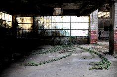 https://www.flickr.com/photos/andrearuwett/shares/05Vb3c | Foto di Andrea Ruwett