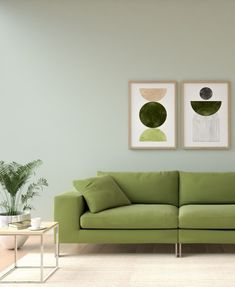 Explore the best wall color options that goes perfectly with olive green couch.
