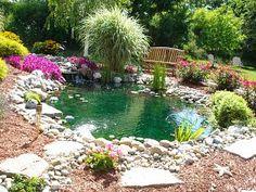 goldfish pond.
