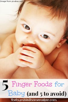 Starting Solids: 5 Finger Foods for Baby (and 5 to avoid) - The Humbled Homemaker