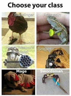 Choose your class - Magical memes and gifs that only a true geek could appreciate and laugh at.