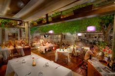 Disfrute del mejor ambiente de Playa del Carmen en nuestro restaurante de cocina mediterránea / italiana de autor