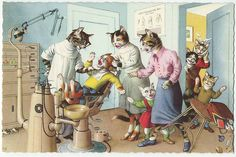 Alfred Mainzer dressed cat postcard terror at the dentists office