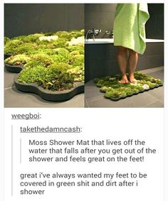 nice 59 Hilarious Memes That Are Way Too Funny To Handle// This is actually pretty awesome because moss requires little dirt underneath it and is very soft and clean on the top. Indoor Water Garden, Indoor Plants, Shower Step, Grass Carpet, Moss Garden, Garden Art, H & M Home, How To Clean Carpet, Funny Pictures