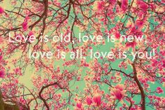 """""""Love is old, love is new, love is all, love is you"""" - The Beatles"""