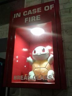 in case of fire break glass haha #pokemon squirtle