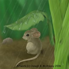 Rainy Days Mouse 2 by randomonia on DeviantArt
