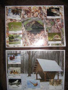 Zvířata, která v zimě spí a která jsou vzhůru Winter Theme, Awesome, Blog, Crafts, Projects, Manualidades, Be Awesome, Handmade Crafts, Craft