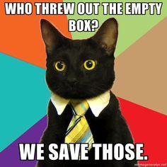 If my cat were a businessman