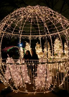Where to find the best Christmas lights in Chicago Winter Activities, Christmas Activities, Christmas Themes, Chicago Christmas, Chicago Winter, Zoo Lights, Chicago Things To Do, Chicago Bars, Best Christmas Lights