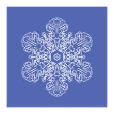 Snowflake_Ten by Catherine Hubert