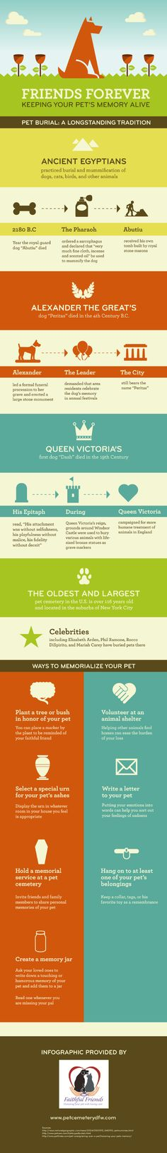 After the loss of a pet, some pet owners may keep collars, tags, or favorite toys to help cope with grief. These small mementos help to honor the pet's memory.  - infographic