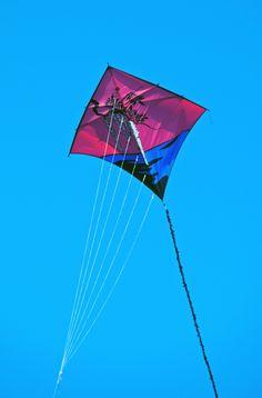https://flic.kr/p/SJYKv8   Tosa   Japanese Art Kites RuudKugel
