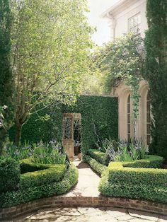 Border around flower beds.  French Design in Houston: Pam Pierce