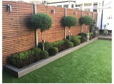 Back Garden Design, Modern Garden Design, Backyard Garden Design, Small Front Gardens, Back Gardens, Outdoor Gardens, Front Garden Ideas Driveway, Side Yard Landscaping, Small Garden Landscape