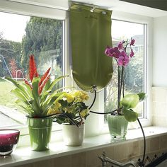 Controls the flow of water to your plants in your absence. Garden Irrigation System, Indoor Bonsai, Outdoor Gardens, Glass Vase, China, Holidays, Water, Green, Flow