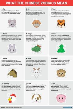 bi_graphics_chinese zodiac meanings