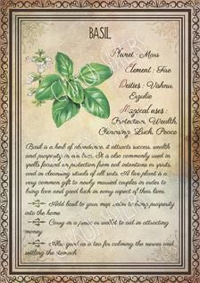 Printable Herbs Book of Shadows Pages Set Herbs & Plants Correspondence, Grimoire Pages, Witchcraft, Wicca, Printable BOS Printable Herbs Book of Shadows Pages Set 1 Herbs & Plants Wicca Herbs, Witchcraft Herbs, Green Witchcraft, Magic Herbs, Herbal Magic, Plant Magic, Herb Meanings, Wiccan Spell Book, Magick Book