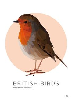 British Birds - Mr. Robin Print | Pretty Limits - Limited Edition Prints for the Home