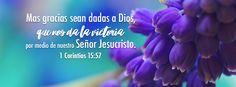 """Nos da la victoria - 1 Corintios 15:57 """"Mas gracias sean dadas a Dios, que nos da la victoria por medio de nuestro Señor Jesucristo. """""""