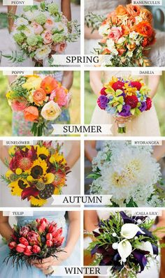 """A handy guide for choosing the """"in season"""" flowers for your"""