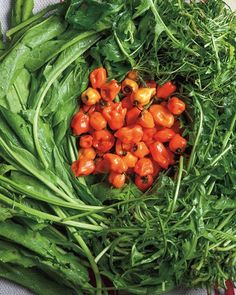 Learn how to make your own fermented hot sauce with foraged, wild greens from…