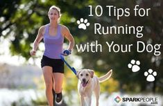 10 Tips for Running with Your Dog. Does Fido want to run with you but you aren't sure of the proper way to run with him? These tips will have you running alongside your favorite 4-legged pal in no time! | via @SparkPeople