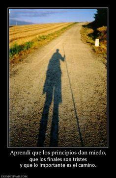 Aprendí que los principios dan miedo, que los finales son tristes y que lo importante es el camino.