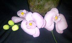 Workshop orchideeen gevolgd