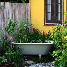 Fish and plants now soak in this vintage bathtub, composing a unique pond garden. Old Bathtub, Vintage Bathtub, Garden Bathtub, Clawfoot Bathtub, Bathtub Ideas, Patio Trees, Patio Pictures, Cast Iron Tub, Recycled Garden