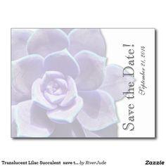 Translucent Lilac Succulent  save the date Postcard