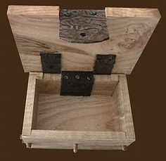 Ambrosia Curly Maple Keepsake Box with Leather Hinge and Clasp