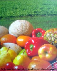 Towards better crops, fruits and veggies..