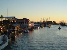 Had dinner here and watched the dolphin play. Shem Creek, near Charleston