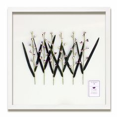 Karen Robertson Collection - 25 X 25 Delphinium Shell Flowers
