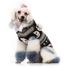 I was looking for a dog jumper for my dog..stumbled across this amazing one and an amazing dog website!!