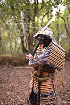 Samurai - Armadura Samurai, en el Monte de las Mercedes. Tenerife.