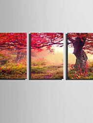 vászon Set Landscape Európai stílus,Három elem Vászon Függőleges Print Art fali dekoráció For lakberendezési