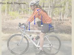 Women's Bike Fit by Georgena Terry  http://www.womenscycling.ca/blog/georgena-terry/womens-body-proportions-different-mens/