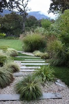 landscape with ornamental grasses | http://beautiful-garden-decors.micro-cash.org