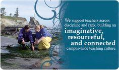 University of Oregon - Teaching Effectiveness Program -- resources, theories, models