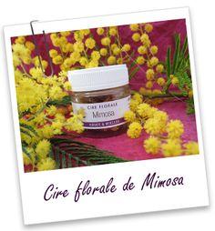 Cire florale Mimosa Aroma-Zone