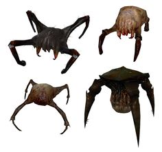 Examples of Head Crabs from half-life