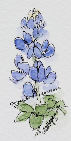 This is my original watercolor painting of a Bluebonnet, my favorite Texas wildflower. It was painted in miniature or collector size. The painting is 2 x 3 inches, and it comes matted in a 5 x 7 mat with an oval opening. The painting and mat have an acid-free foamboard backing, and