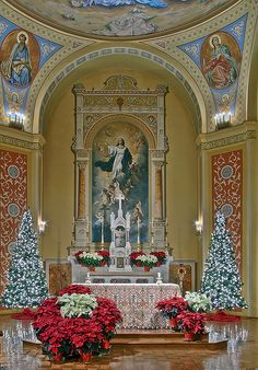 Saint Mary of the Barrens Roman Catholic Church, in Perryville, Missouri, USA - Christmas decorations around altar by msabeln, via Flickr